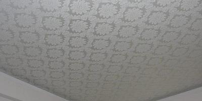 Дженнифер Гинлей-Хэган - полная биография